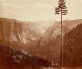 Carleton E. Watkins ( U.S.A., 1829–1916), The Yosemite Valley from the