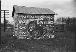A 1936 Walker Evans shot