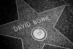 David Bowie star
