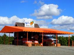 citrus stand, riverside, ca