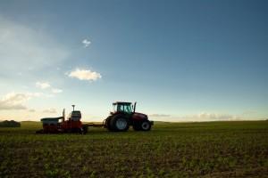 Crops in Brazil