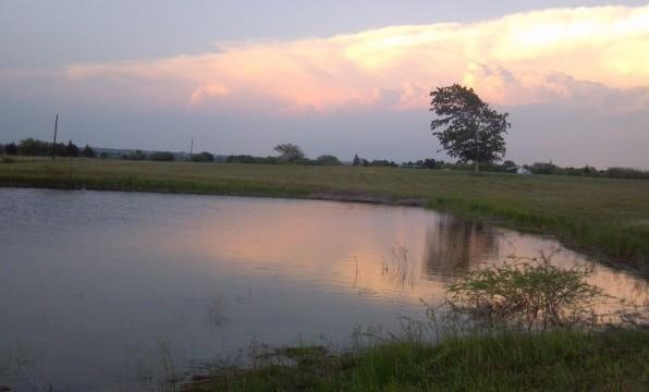 Christine's Pond