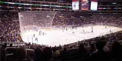 Kings at the Staples Center