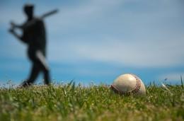 nostalgia_baseballandlies
