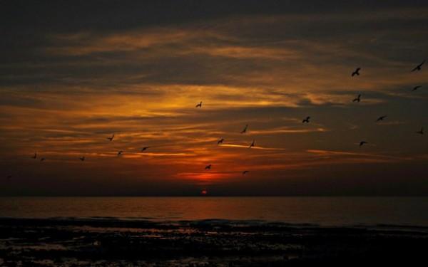 sunset_hangerywithapurpose