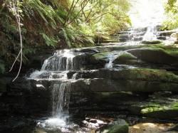 waterfall_elizabethbishop