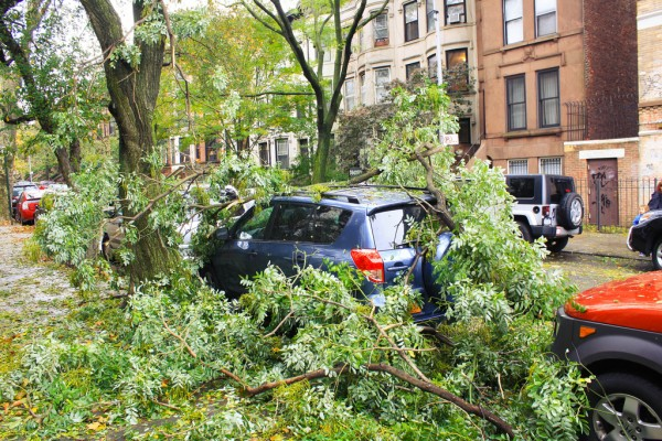 Hurricane Sandy in Park Slope