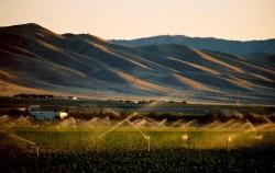 All California's Problems Lead to the SJV