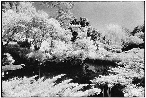 Lao-tzu's Dream, n.d., Chris Keledjian. Gelatin silver print. Image courtesy of and © Chris Keledjian.