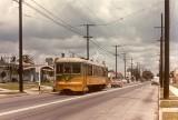lutzbrooks_streetcar