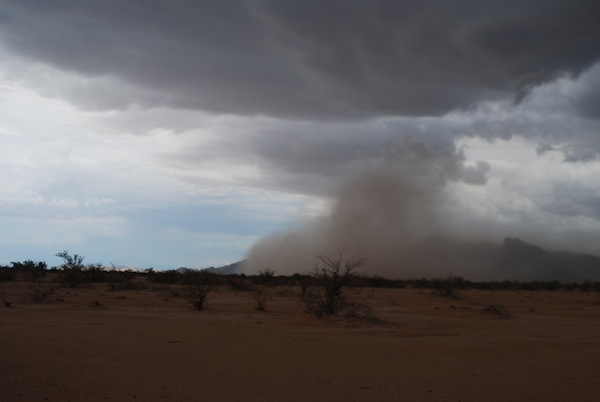 Fine surface soils being increasingly blown away by seasonal dust storms known as haboobs. Image courtesy: David Brown