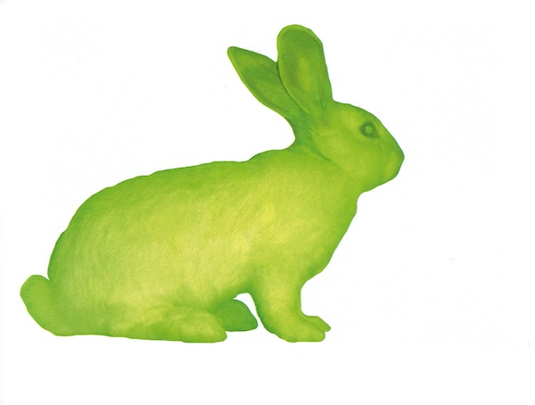 "Eduardo Kac's ""GFP Bunny,"" 2000, in which the artist combined jellyfish and rabbit DNA to produce a bunny, ""Alba,"" that glows green under blue light."