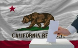 An Outsider's Guide to Running—and Losing—a California Election