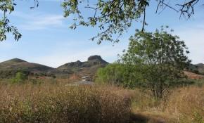 Woodworth Riparian Preserve
