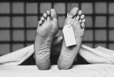 woodworth toe tag backup (1)