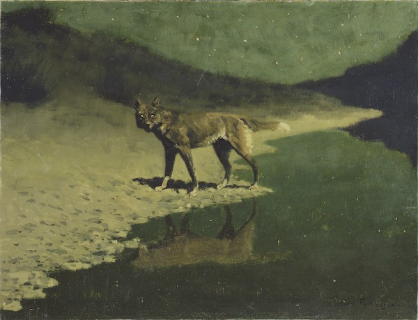 Moonlight, Wolf, ca. 1909, oil on canvas, by Frederick Remington. Addison Gallery of American Art, Phillips Academy, Andover, Massachusetts; Gift of the members of the Phillips Academy Board of Trustees