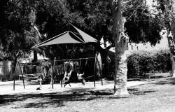 Glimpses Leonardo Santander on Ross Snyder playground copy 2