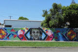 ortega-lead-mural-wellness