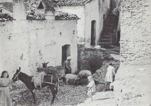 Chiaromonte in 1954-1955.
