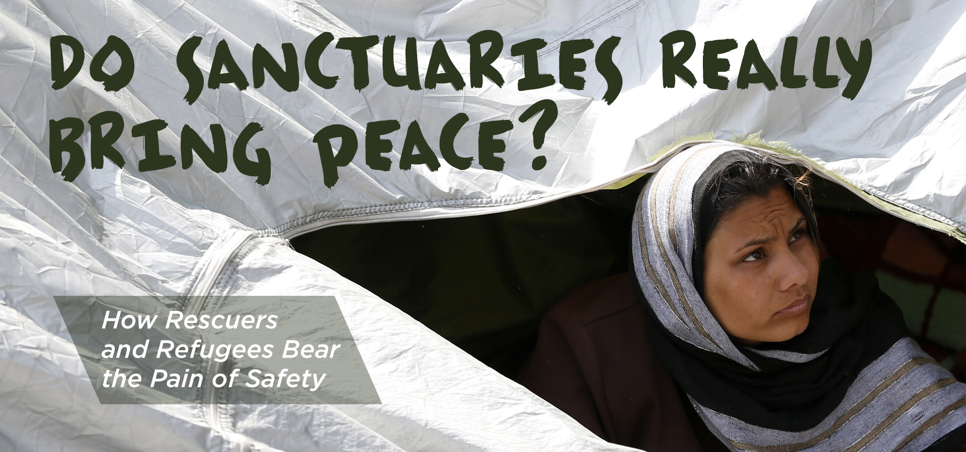 Do Sanctuaries Really Bring Peace?