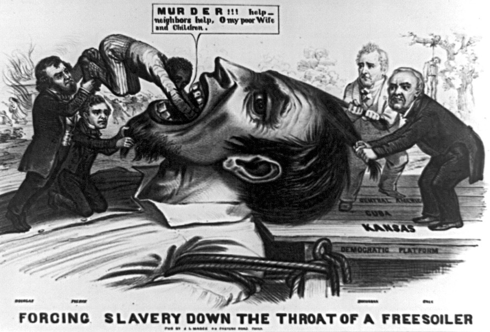 James mcpherson slavery essay