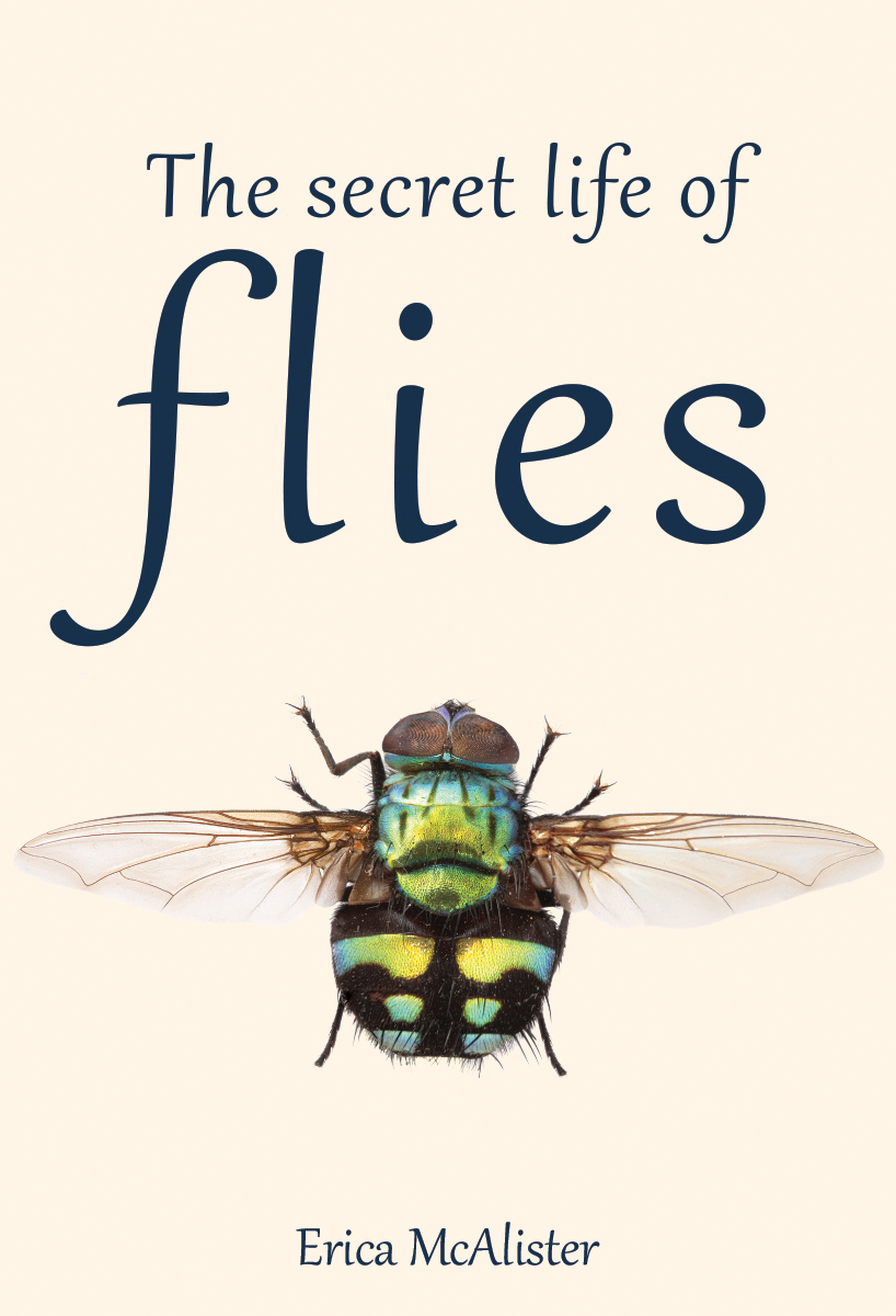 The Secret Lives of Flies