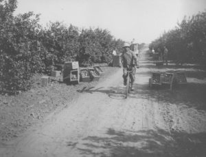 When Police Clamped Down on Southern California's Japanese-American Bicycling Craze | Zocalo Public Square • Arizona State University • Smithsonian