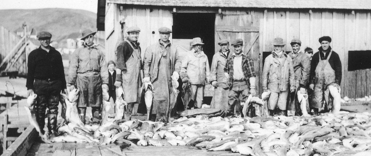 When 'Codfish Fever' Swept San Francisco | Zocalo Public Square • Arizona State University • Smithsonian