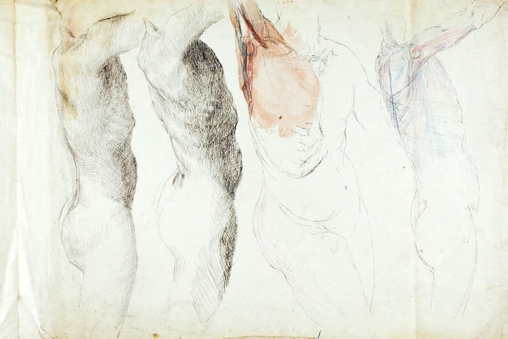etymology of a blouse | Zocalo Public Square • Arizona State University • Smithsonian