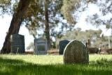 My Summer at the Graveyard | Zocalo Public Square • Arizona State University • Smithsonian