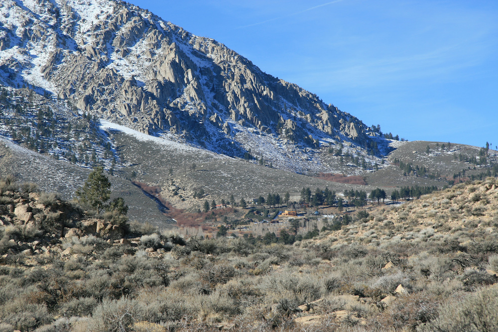 California's Eastern Sierra Reminds Us There's Life After Disaster | Zocalo Public Square • Arizona State University • Smithsonian