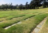 Contemplating the COVID Carnage at California's Most Historic Cemetery | Zocalo Public Square • Arizona State University • Smithsonian